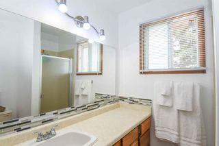 Photo 29: 1244 Berkley Drive NW in Calgary: Beddington Heights Detached for sale : MLS®# A1118414