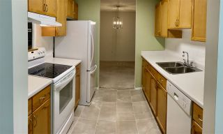 Photo 13: 203 17511 98A Avenue in Edmonton: Zone 20 Condo for sale : MLS®# E4224086