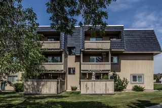 Photo 25: 2308 3115 51 Street SW in Calgary: Glenbrook Apartment for sale : MLS®# A1024636