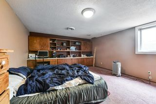 Photo 22: 91 Mardale Crescent NE in Calgary: Marlborough Detached for sale : MLS®# A1107782