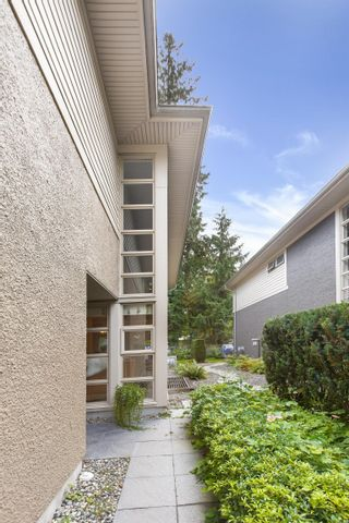 Photo 7: 5 3750 EDGEMONT BOULEVARD in North Vancouver: Edgemont Townhouse for sale : MLS®# R2624665