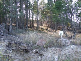 Photo 6: Lot 21 PINERIDGE MOUNTAIN PLACE in Invermere: Vacant Land for sale : MLS®# 2458247