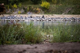 Photo 1: 10 Bowbank Crescent NW in Calgary: Bowness Residential Land for sale : MLS®# A1148358