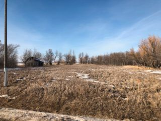 Photo 4: 0 53N Road: RM Tache Vacant Land for sale (R05)  : MLS®# 202109286
