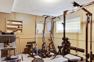 Photo 17: 11 Berkley Court NW in Calgary: Beddington Heights Semi Detached for sale : MLS®# C4253219