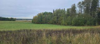 Photo 4: : Rural Lac La Biche County Manufactured Home for sale : MLS®# E4264058