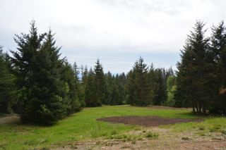 Photo 17:  in : Sk French Beach Land for sale (Sooke)  : MLS®# 875094