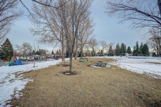 Photo 32: 76 Flavelle Road SE in Calgary: Fairview Detached for sale : MLS®# A1084769