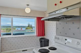 Photo 33: 232 McCarthy St in : CR Campbell River Central House for sale (Campbell River)  : MLS®# 874727