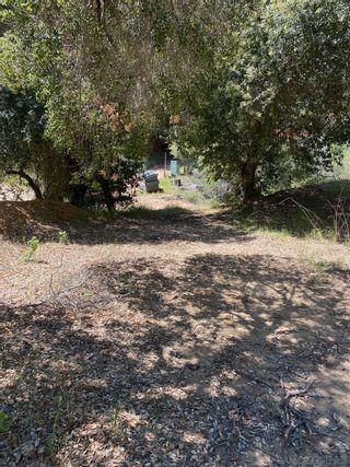 Photo 4: OUT OF AREA Property for sale: 0 Mesa Grande Rd in Santa Ysabel