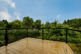 Photo 11: 4051 Hodgson Pl in VICTORIA: SE Lake Hill House for sale (Saanich East)  : MLS®# 842061