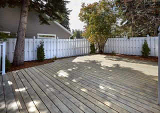 Photo 43: 95 VALLEYVIEW Crescent in Edmonton: Zone 10 House for sale : MLS®# E4265222