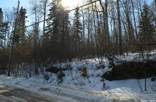 Photo 5: 154 Carwin Park Drive in Emma Lake: Lot/Land for sale : MLS®# SK846951