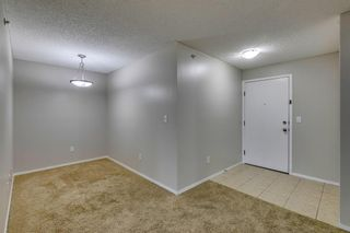 Photo 6: 5307 16969 24 Street SW in Calgary: Bridlewood Apartment for sale : MLS®# A1146769