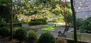 """Photo 9: 124 1185 PACIFIC Street in Coquitlam: North Coquitlam Condo for sale in """"CENTREVILLE"""" : MLS®# R2622507"""