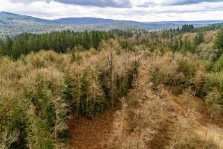 Photo 5: 30684 DEWDNEY TRUNK Road in Mission: Stave Falls Land for sale : MLS®# R2536315