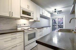Photo 10: 3210 30A Avenue SE in Calgary: Dover Semi Detached for sale : MLS®# A1055012
