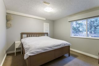 Photo 13: 3758 COAST MERIDIAN Road in Port Coquitlam: Oxford Heights House for sale : MLS®# R2420873