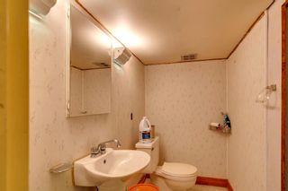 Photo 20: 1027 Rundle Crescent NE in Calgary: Renfrew Detached for sale : MLS®# A1144424