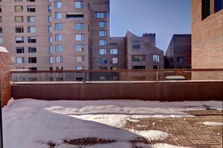 Photo 43: 500J 500 EAU CLAIRE Avenue SW in Calgary: Eau Claire Apartment for sale : MLS®# C4281669