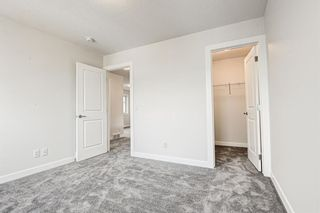 Photo 39: 216 Red Sky Terrace NE in Calgary: Redstone Detached for sale : MLS®# A1125516