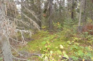 """Photo 13: Lot 8 GLACIER VIEW Road in Smithers: Smithers - Rural Land for sale in """"Silvern Estates"""" (Smithers And Area (Zone 54))  : MLS®# R2410914"""
