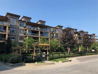 """Photo 1: 225 8218 207A Street in Langley: Willoughby Heights Condo for sale in """"Walnut Ridge 4"""" : MLS®# R2293945"""
