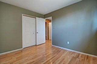 Photo 24: 14 Radcliffe Crescent SE in Calgary: Albert Park/Radisson Heights Detached for sale : MLS®# A1085056