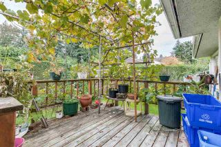 Photo 12: 969 GATENSBURY Street in Coquitlam: Harbour Chines House for sale : MLS®# R2413036