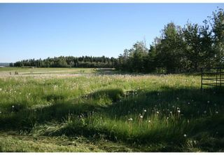 Photo 13: 3 4141 Twp Rd 340: Rural Mountain View County Land for sale : MLS®# C4123342