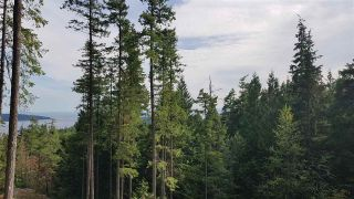 "Photo 23: Lot 49 FLINT Road: Keats Island Land for sale in ""10 Acres"" (Sunshine Coast)  : MLS®# R2460996"