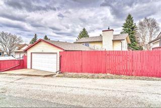 Photo 8: 103 Beddington Way NE in Calgary: Beddington Heights Detached for sale : MLS®# A1099388