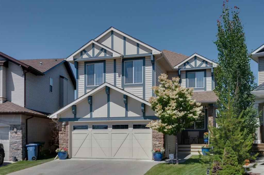 Main Photo: 160 Brightonstone Gardens SE in Calgary: New Brighton Detached for sale : MLS®# A1009065