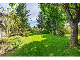 """Photo 33: 5693 246B Street in Langley: Salmon River House for sale in """"Strawberry Hills"""" : MLS®# R2581295"""