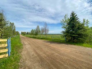 Photo 12: 15166 BUICK CREEK Road in Fort St. John: Fort St. John - Rural W 100th Agri-Business for sale (Fort St. John (Zone 60))  : MLS®# C8030416