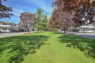 "Photo 21: 81 32718 GARIBALDI Drive in Abbotsford: Abbotsford West Condo for sale in ""FIRCREST"" : MLS®# R2454549"
