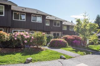 """Photo 30: 802 555 W 28TH Street in North Vancouver: Upper Lonsdale Townhouse for sale in """"CEDARBROOKE VILLAGE"""" : MLS®# R2579091"""
