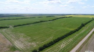 Photo 12: Central Butte - Mackow Land in Enfield: Farm for sale (Enfield Rm No. 194)  : MLS®# SK862931