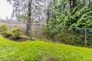 """Photo 20: 74 32777 CHILCOTIN Drive in Abbotsford: Central Abbotsford Townhouse for sale in """"Cartier Heights"""" : MLS®# R2150527"""