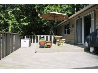 Photo 16: 12137 ROTHSAY Street in Maple Ridge: Northeast House for sale : MLS®# V1055449