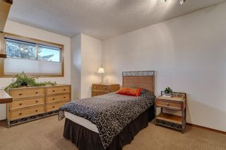 Photo 31: 239 Douglasbank Drive SE in Calgary: Douglasdale/Glen Detached for sale : MLS®# A1050993