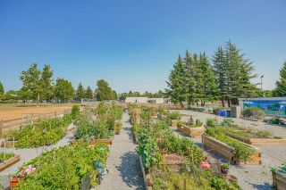 """Photo 19: 215 20448 PARK Avenue in Langley: Langley City Condo for sale in """"James Court"""" : MLS®# R2606212"""