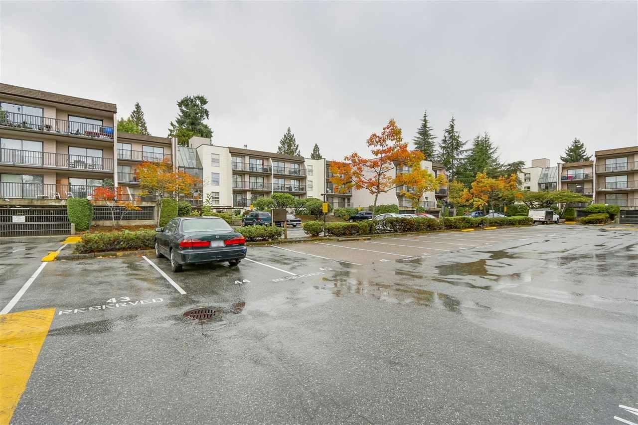 Main Photo: 114 15238 100 Avenue in Surrey: Guildford Condo for sale (North Surrey)  : MLS®# R2213652
