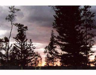 Photo 10: LOT 4 WATCH LAKE Road in Lone_Butte: Lone Butte/Green Lk/Watch Lk Land for sale (100 Mile House (Zone 10))  : MLS®# N193163