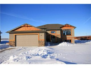 Photo 1: 46 Sheila Drive in New Bothwell: R16 Residential for sale : MLS®# 1703710