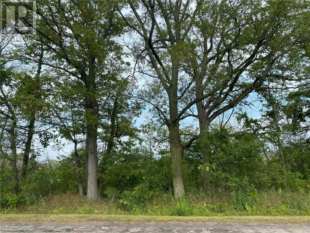 Main Photo: LOT 1 SUTTER CREEK Drive in Hamilton Twp: Vacant Land for sale : MLS®# 40138564