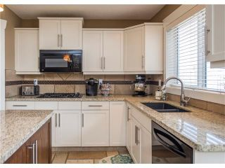 Photo 16: 34 CHAPALA Court SE in Calgary: Chaparral House for sale : MLS®# C4108128