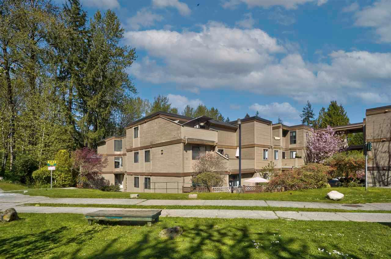 """Photo 1: Photos: 204 9143 SATURNA Drive in Burnaby: Simon Fraser Hills Townhouse for sale in """"Mountain Wood"""" (Burnaby North)  : MLS®# R2569786"""