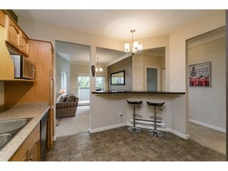 "Photo 10: 314 12464 191B Street in Pitt Meadows: Mid Meadows Condo for sale in ""LASEUR MANOR"" : MLS®# R2166407"