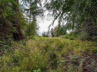 Photo 29: 1287 KYE BAY ROAD in COMOX: CV Comox Peninsula House for sale (Comox Valley)  : MLS®# 815754